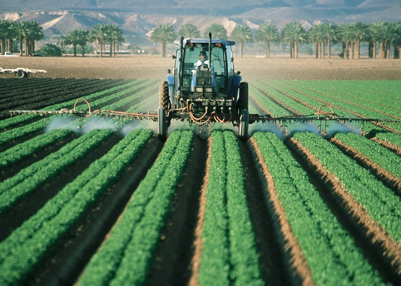 Pesticides are widely used in industrial farming.
